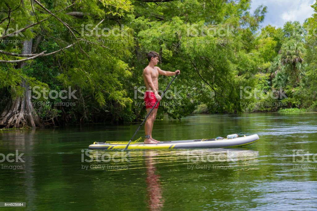 Paddleboarding on the Silver River stock photo