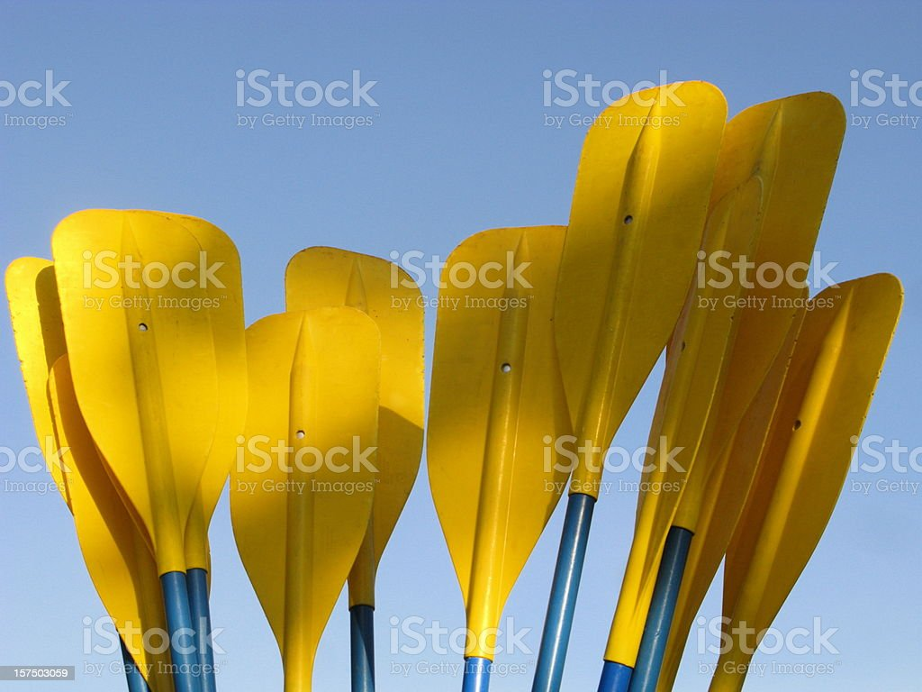 Paddles Kayak Oars  Boat royalty-free stock photo