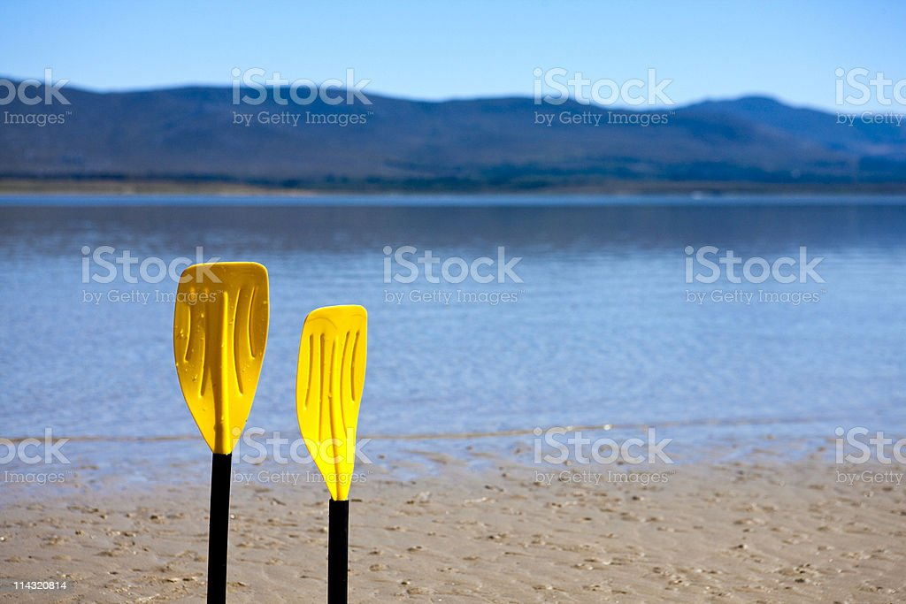 Paddles on the shore royalty-free stock photo