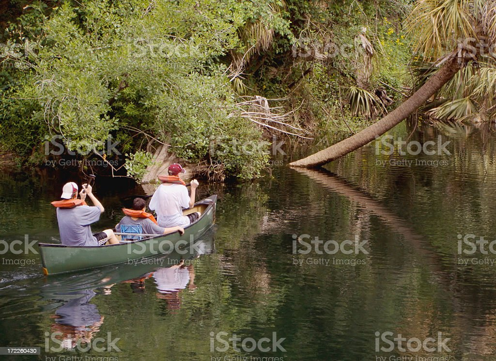Paddling Canoe on Hillsborough River in Florida royalty-free stock photo