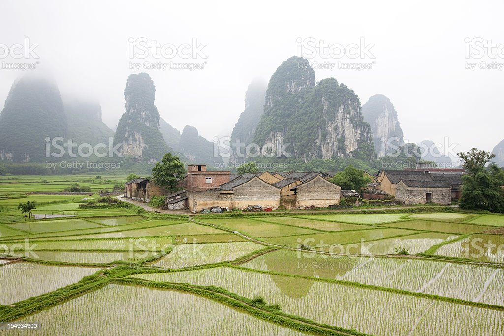 Paddy Field and Village royalty-free stock photo