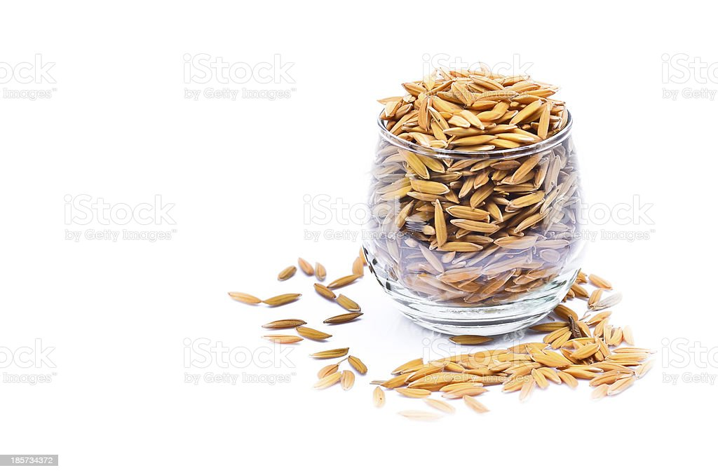 Paddy in glass royalty-free stock photo