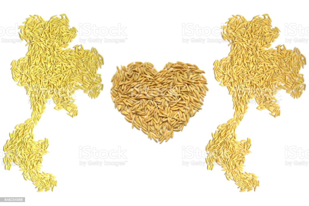 Paddy rice Thai map and heart shape stock photo