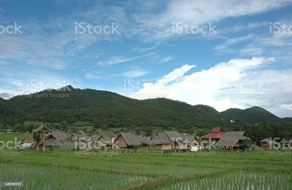 Paddy Village royalty-free stock photo