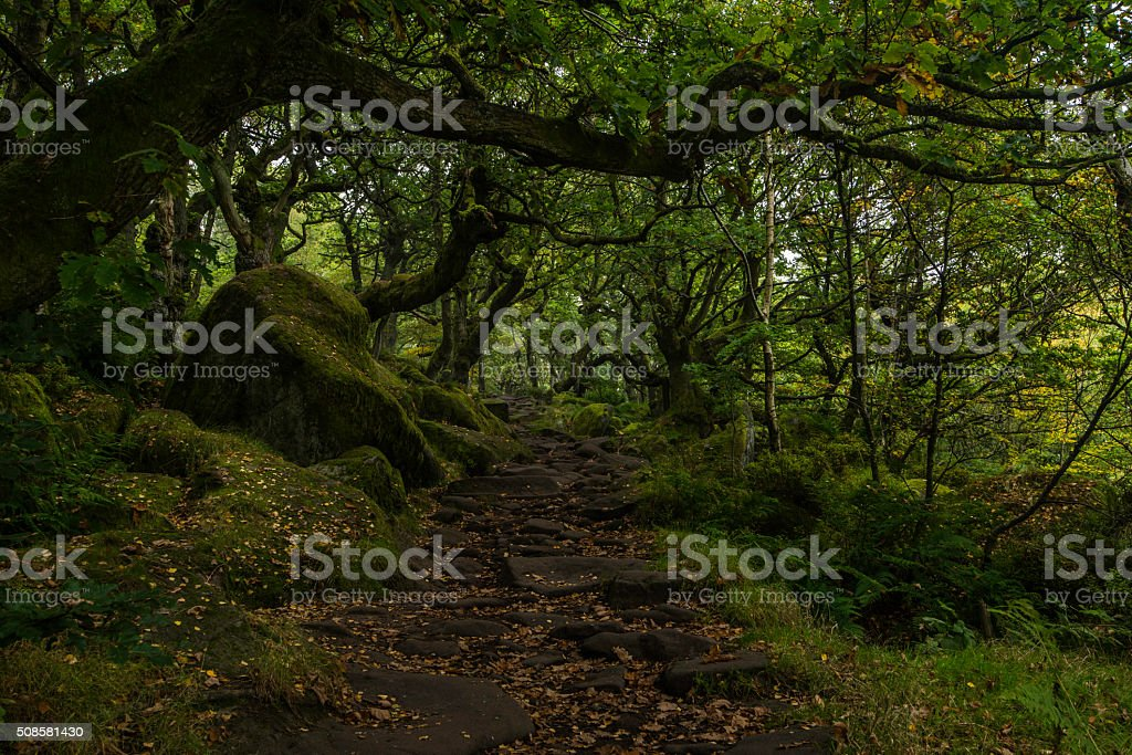 Padley Gorge path stock photo