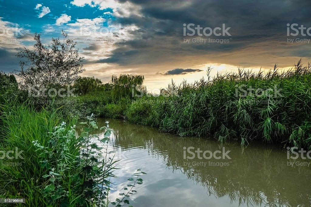 Padule di Fucecchio, Natural Park, Tuscany stock photo
