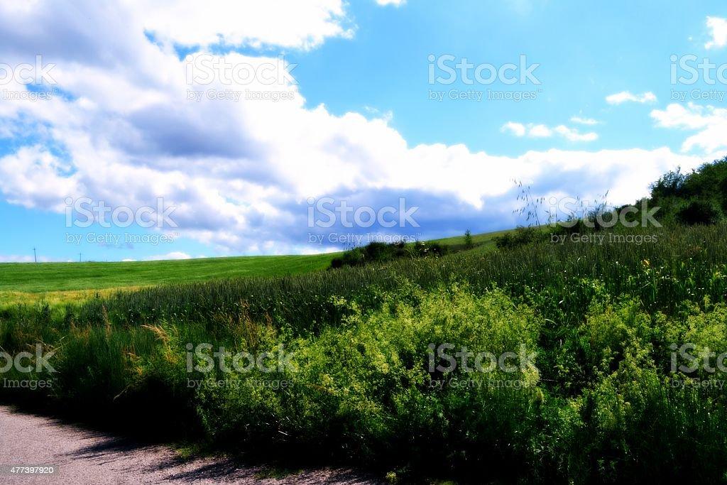 Paesaggi d'Italia. stock photo