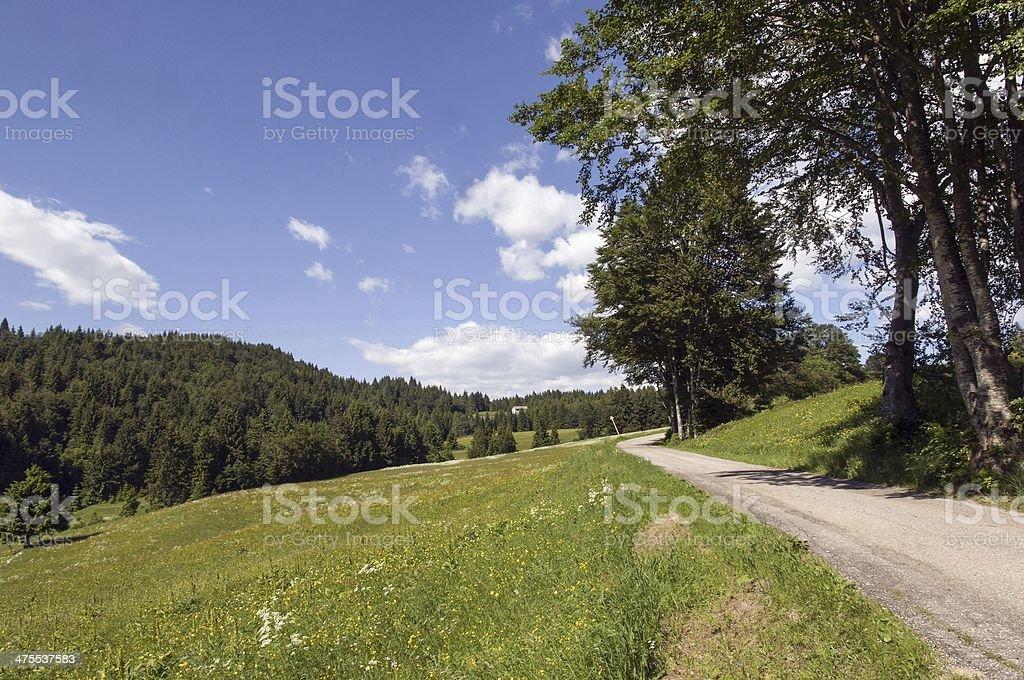 Paesaggio alpino stock photo