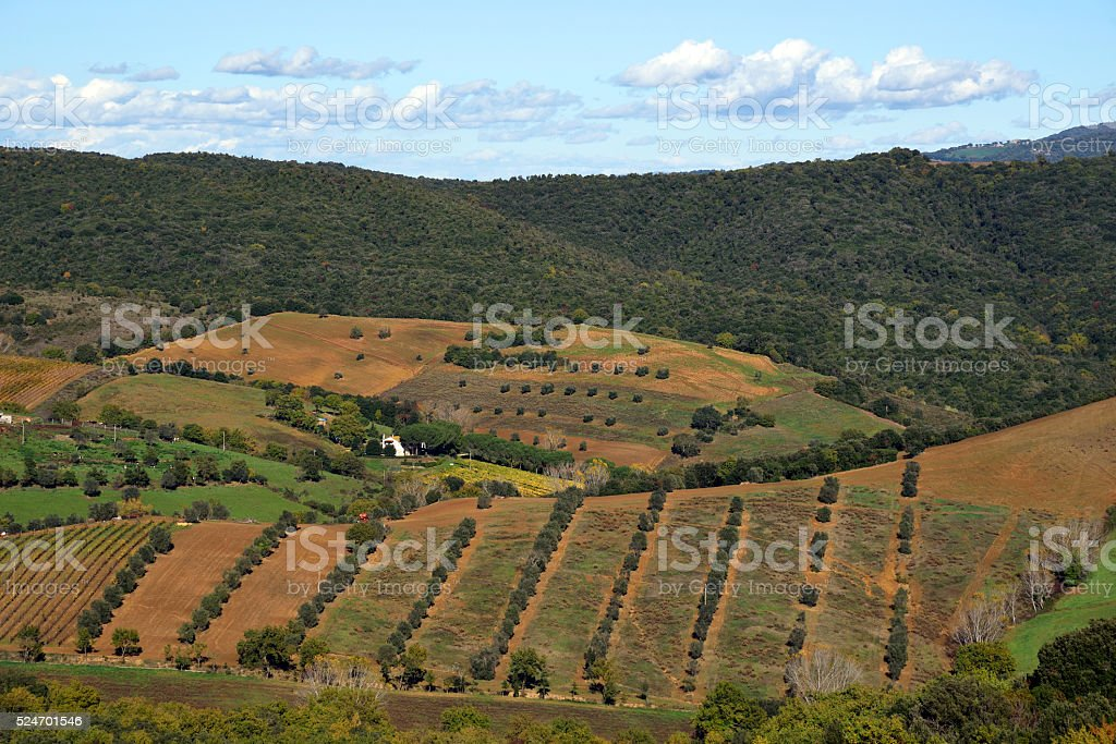 paesaggio rurale stock photo