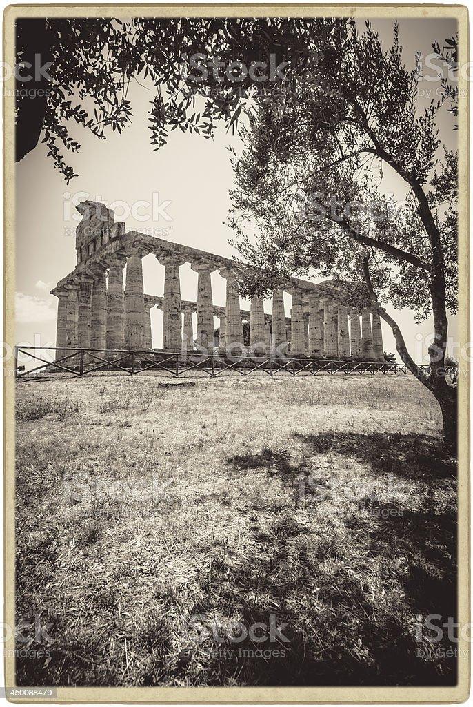 Paestum, Temple of Athena. royalty-free stock photo