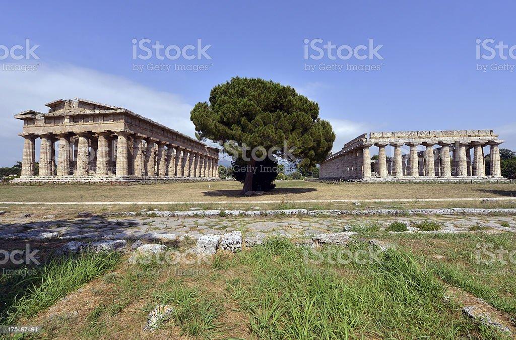 Paestum temples stock photo