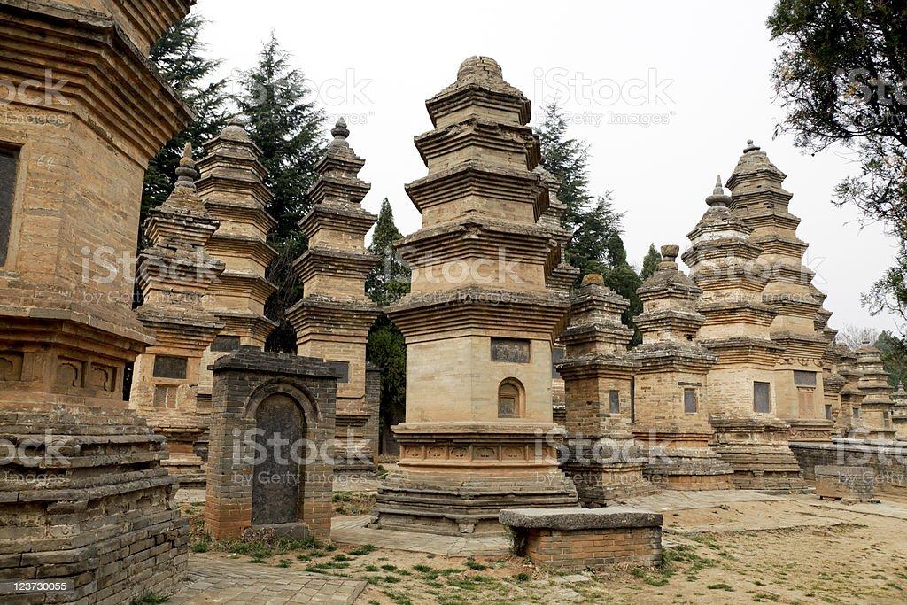 Pagoda Forest stock photo