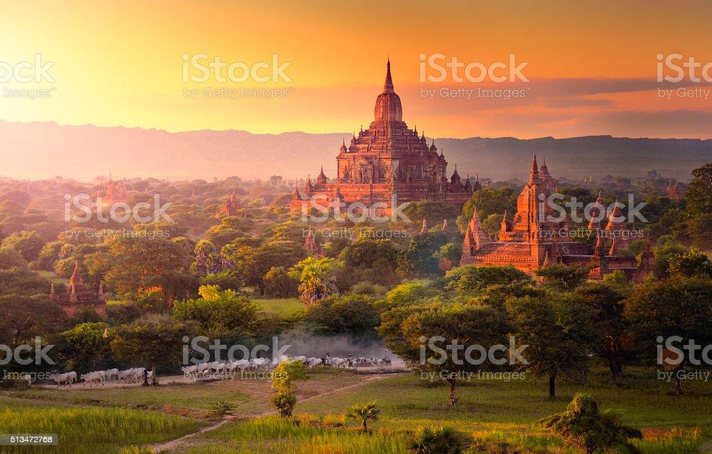 Pagoda landscape in the plain of Bagan, Myanmar. stock photo