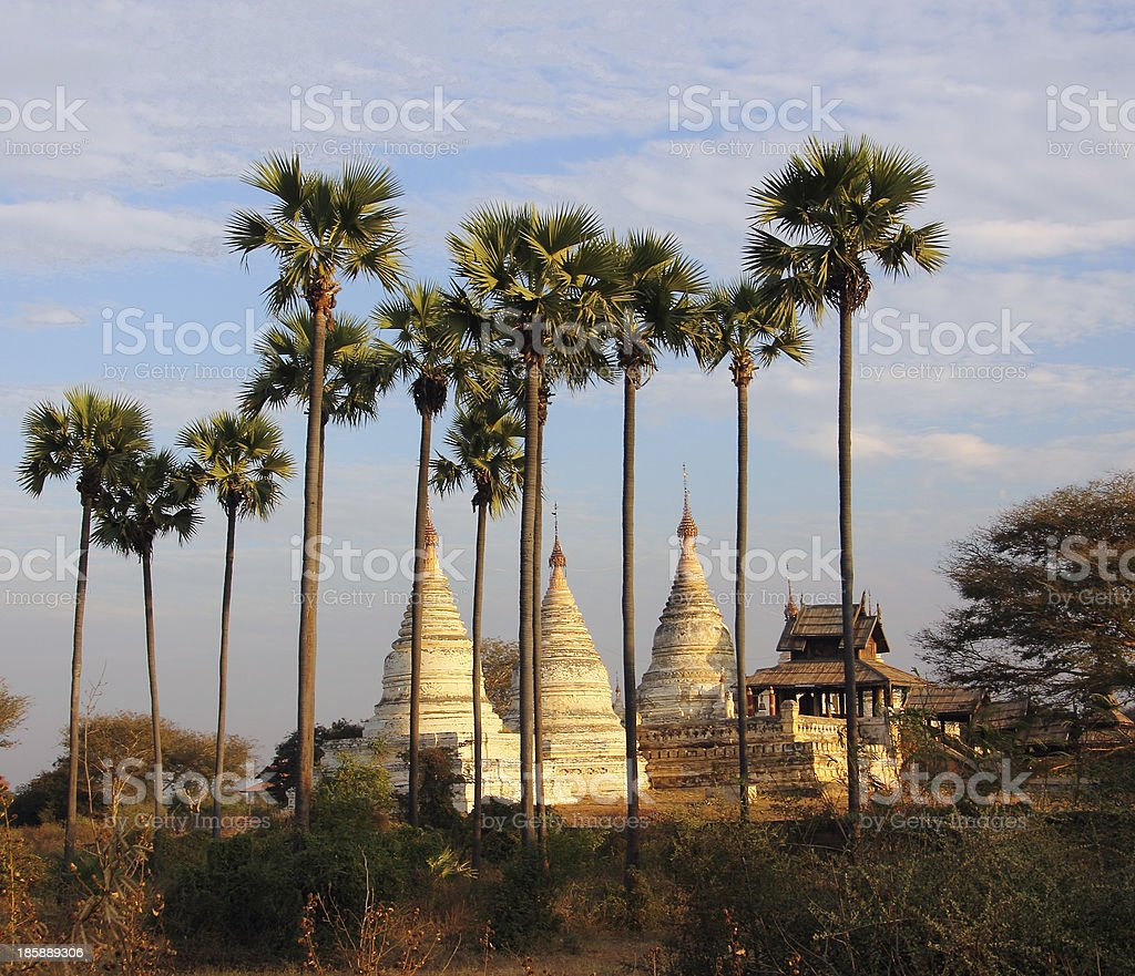 pagodas and palmtrees royalty-free stock photo