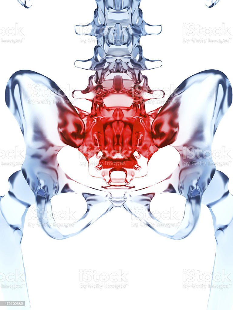 painful sacrum royalty-free stock photo