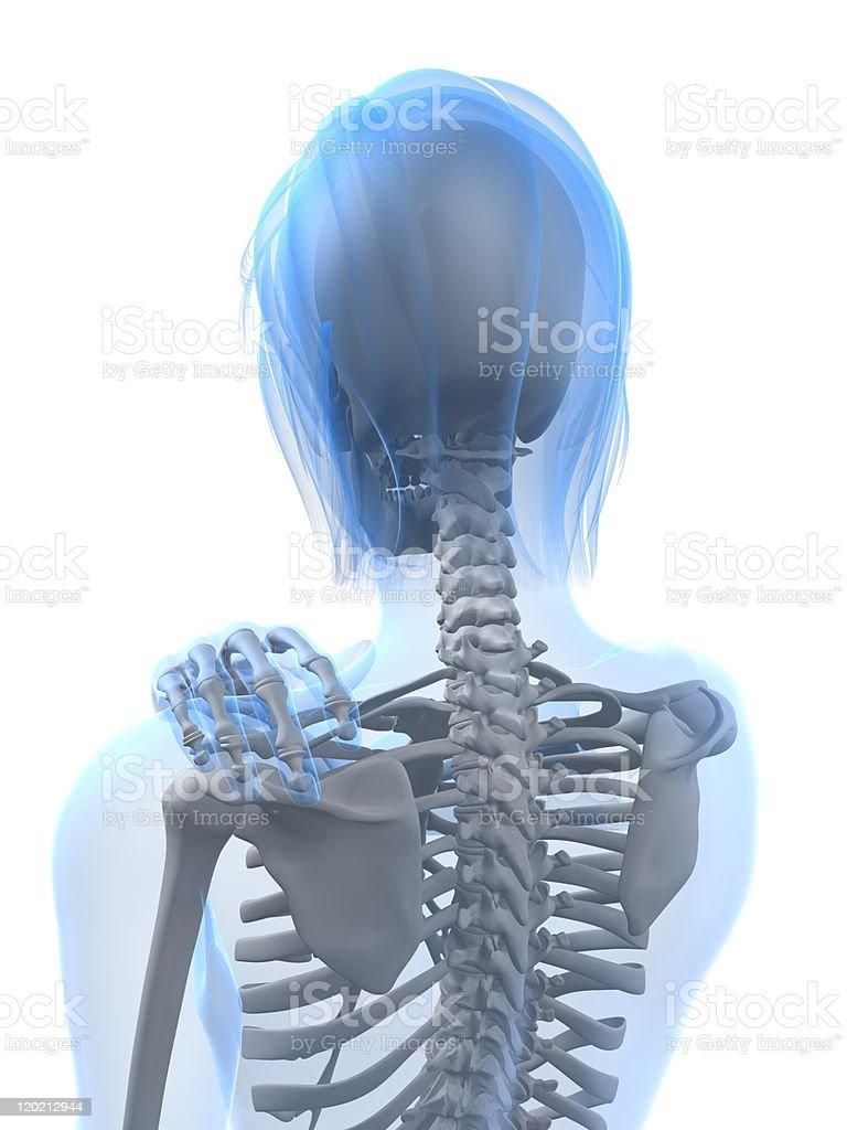 painful shoulder illustration royalty-free stock photo