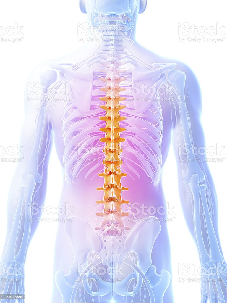 painful spine and back nerves royalty-free stock photo