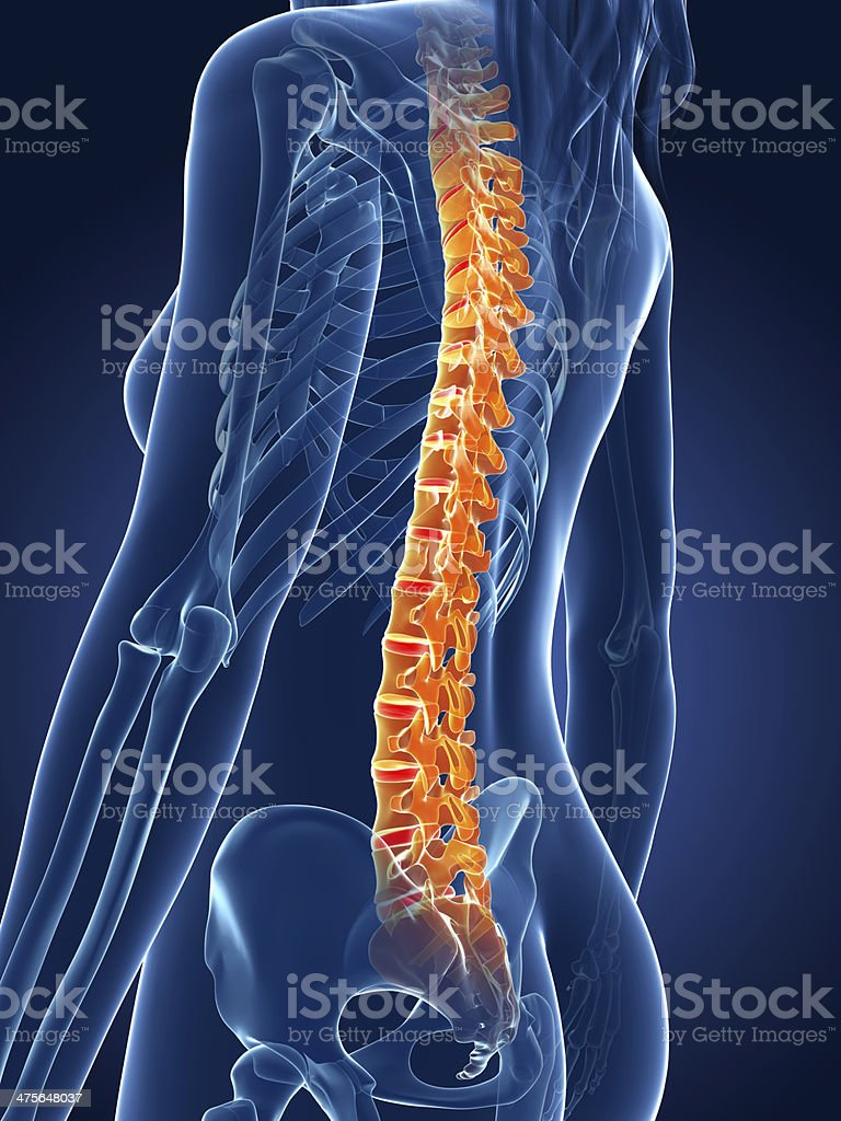 painful spine royalty-free stock photo