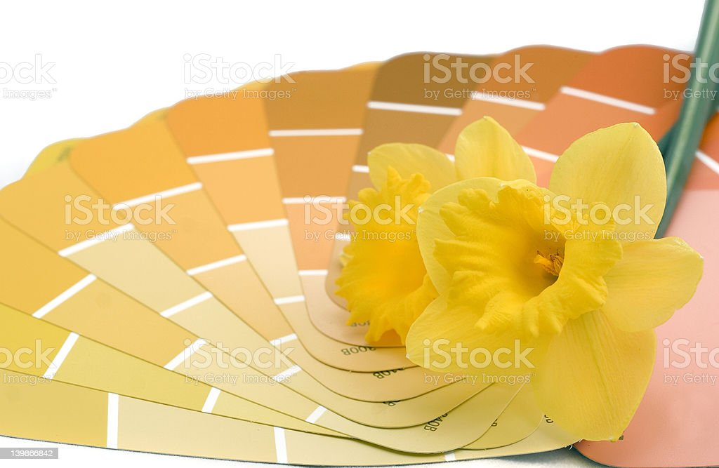 paint house in spring colors royalty-free stock photo