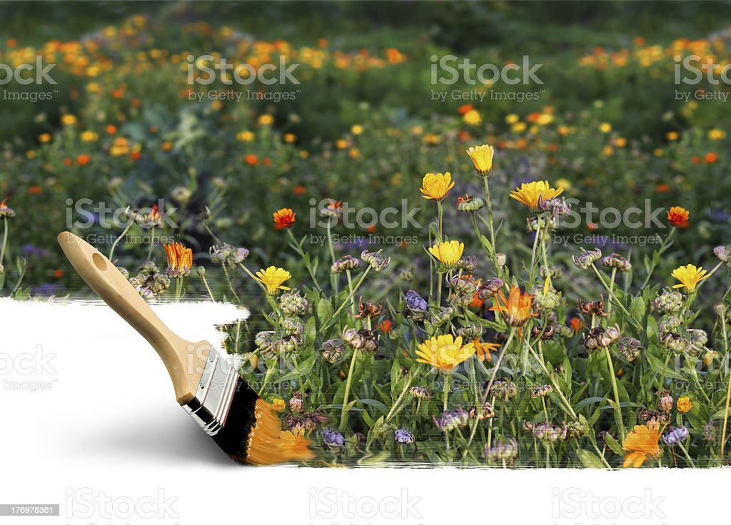 Paintbrush painting autumn colors royalty-free stock photo