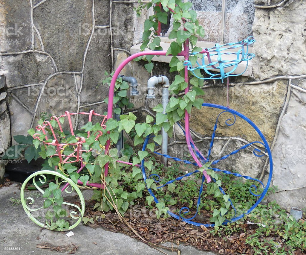 Painted Bicycle Covered in Ivy photo libre de droits