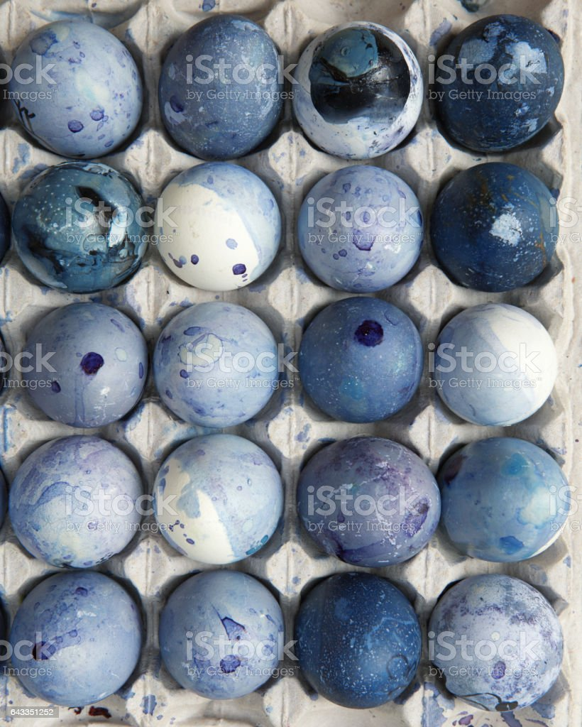 painted blue eggs in the tray stock photo