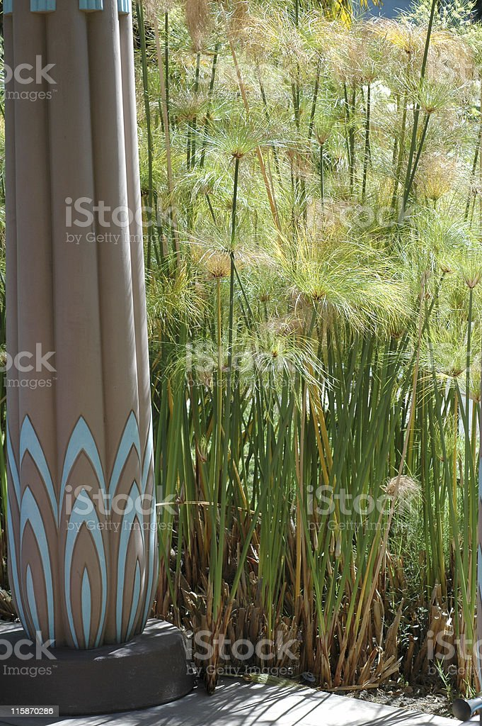 A painted column on a porch next to tall cyperus papyrus. royalty-free stock photo