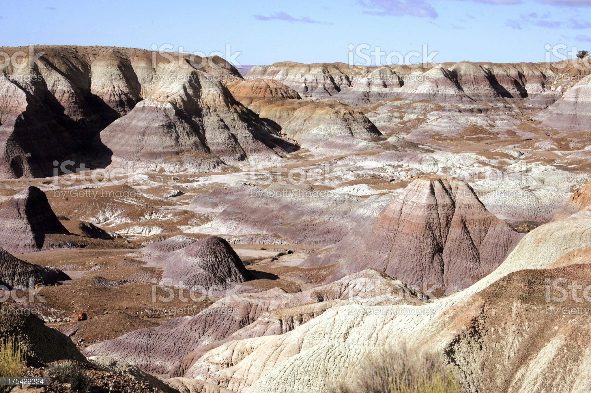 Painted Desert and Petrified forest royalty-free stock photo