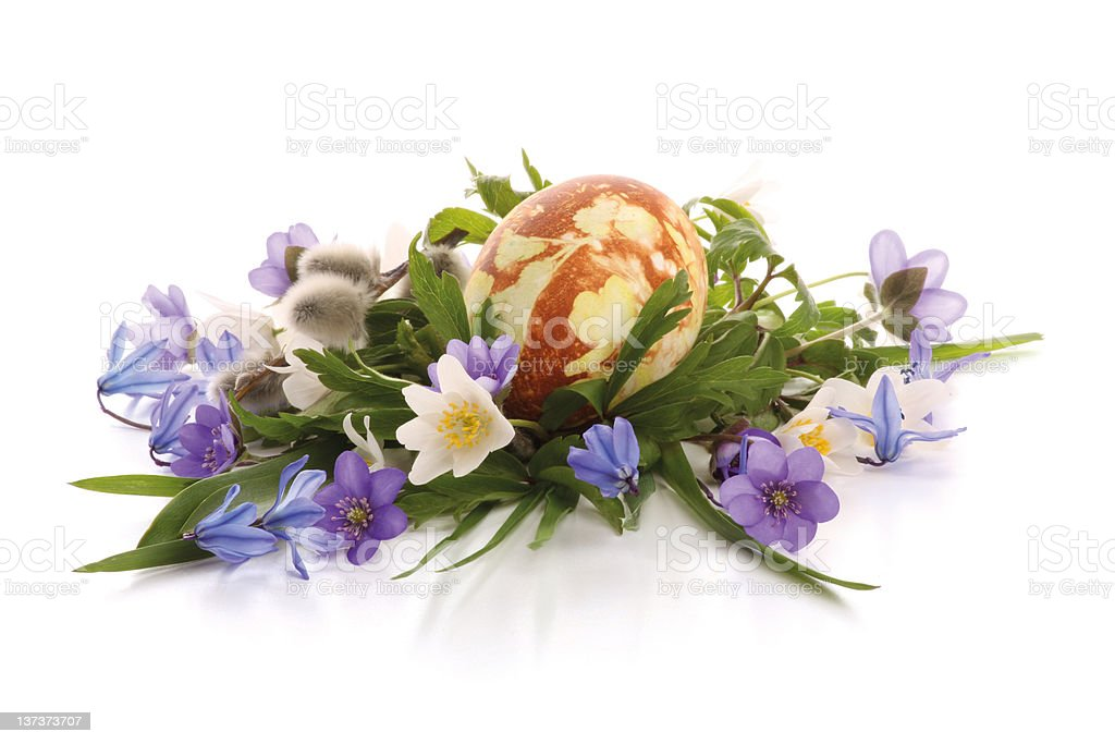 Painted easter egg and spring flowers royalty-free stock photo
