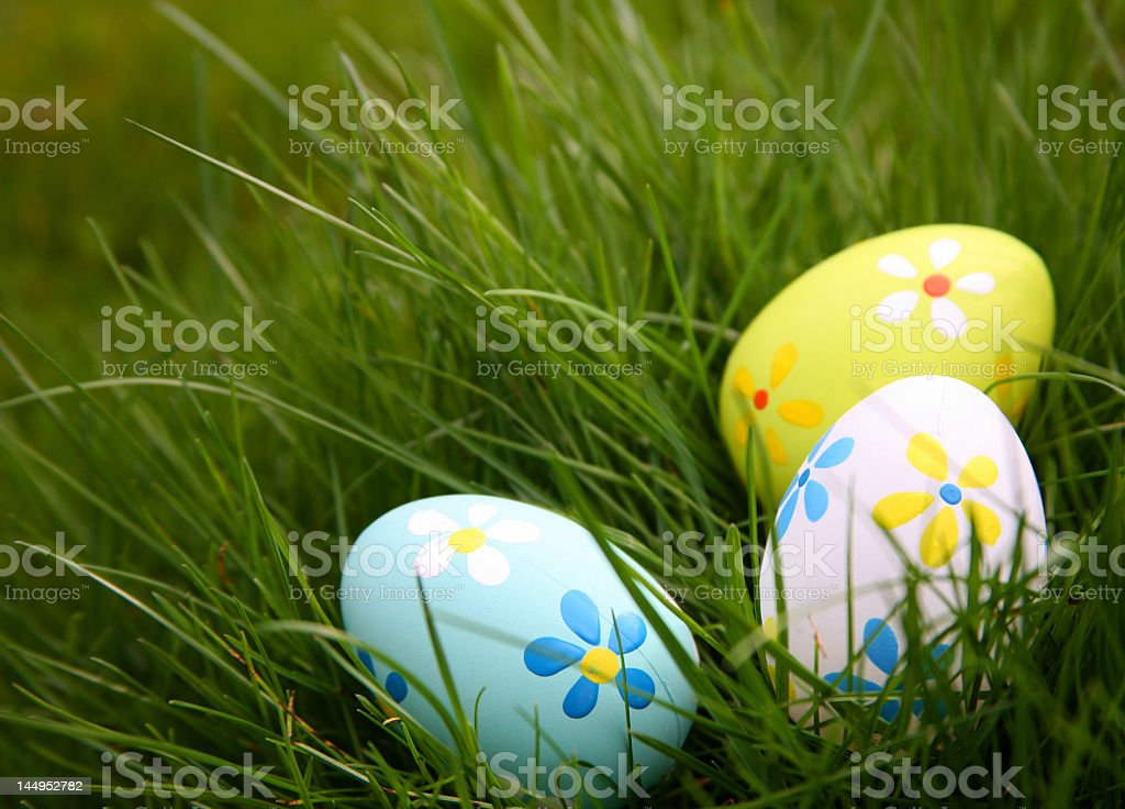Painted Easter Eggs hidden in the grass royalty-free stock photo