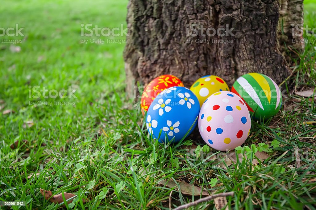 Painted Easter eggs hidden on the grass stock photo