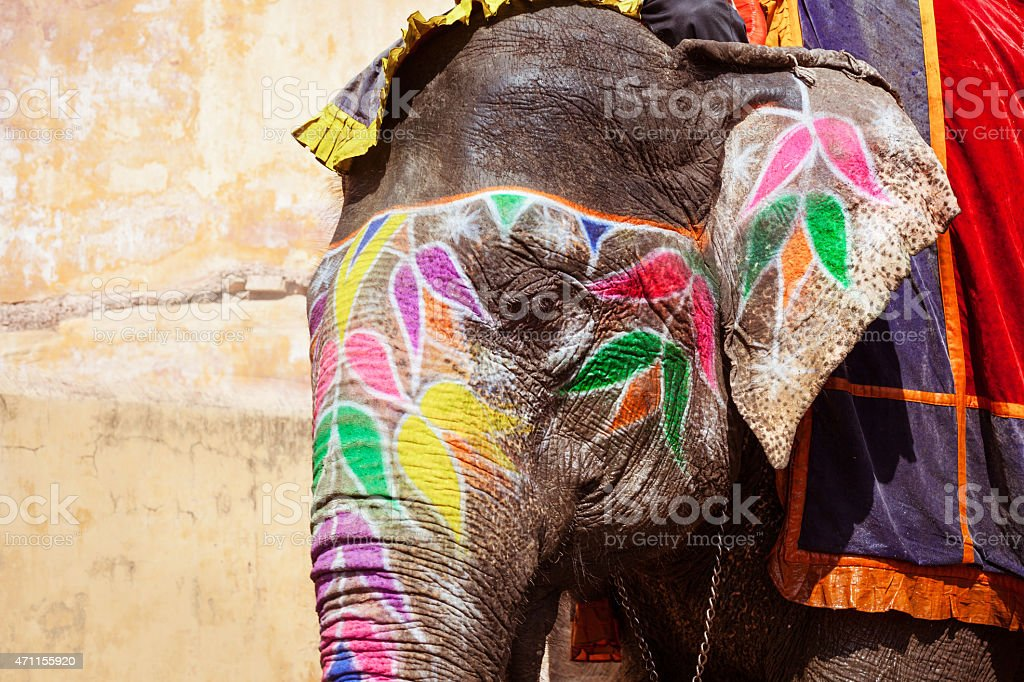 Painted elephant in Amber Fort, Jaipur, India stock photo