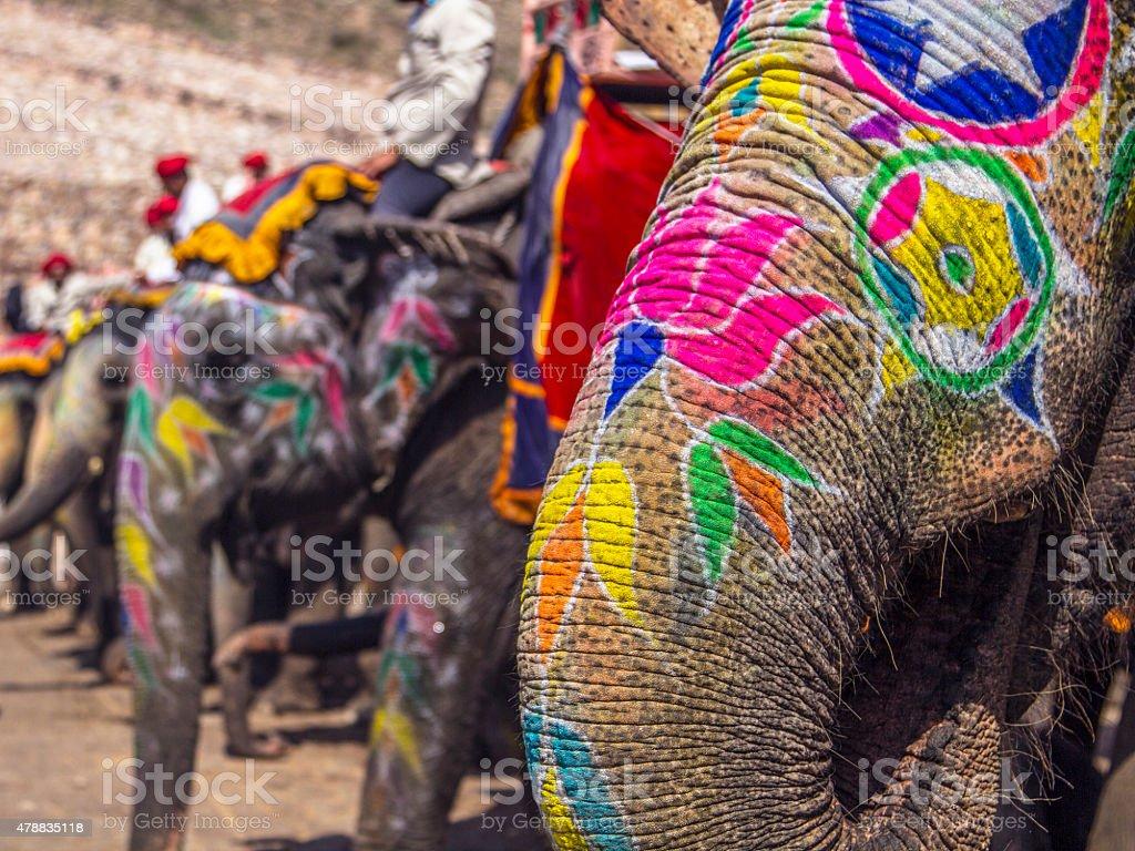Painted elephants, Jaipur stock photo