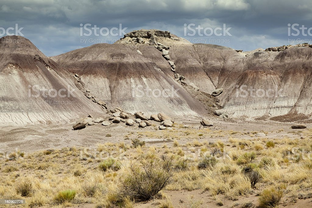 Painted Hills in Petrified Forest NP stock photo