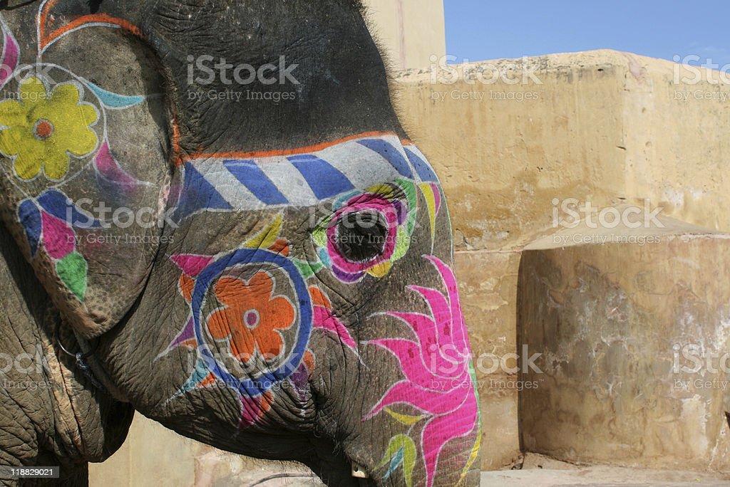 Painted Indian Elephant royalty-free stock photo