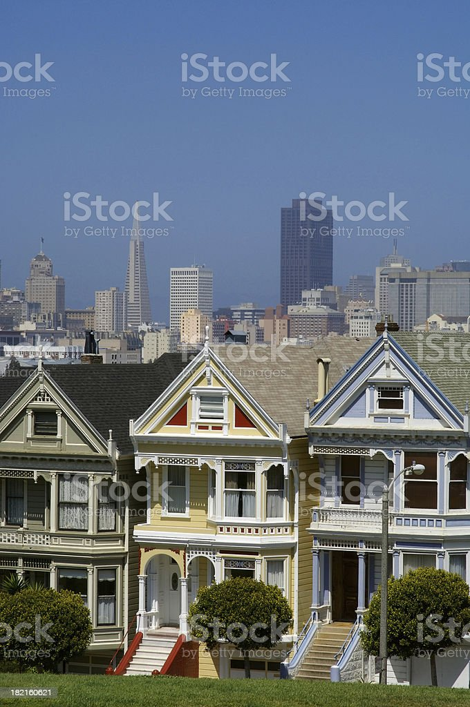 Painted Ladies 2 royalty-free stock photo