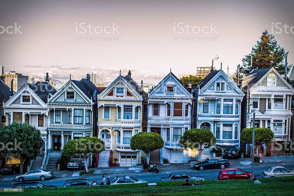 Painted Ladies stock photo