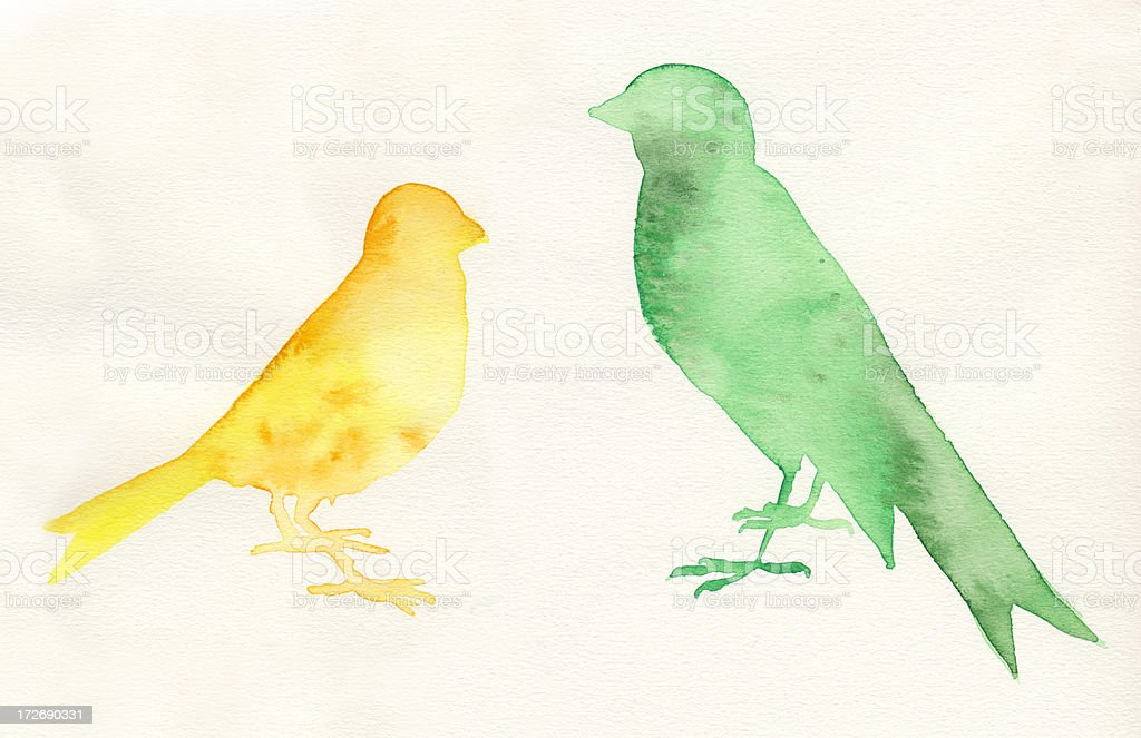 Painted watercolor birds stock photo