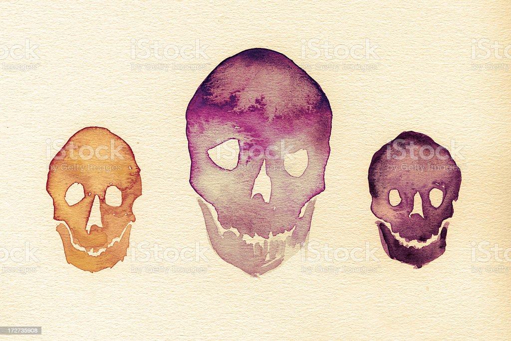Painted watercolor skulls royalty-free stock photo