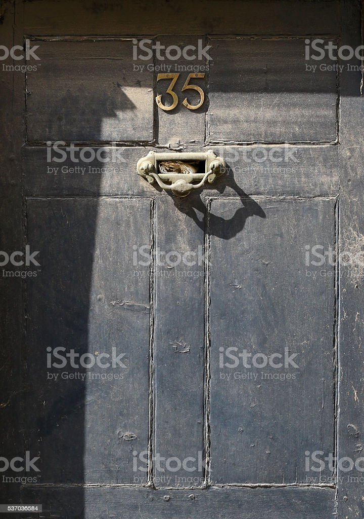Painted Wooden Door Number 35 Grunge Texture stock photo
