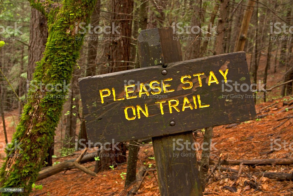 A painted wooden sign along a trail in the forest stock photo