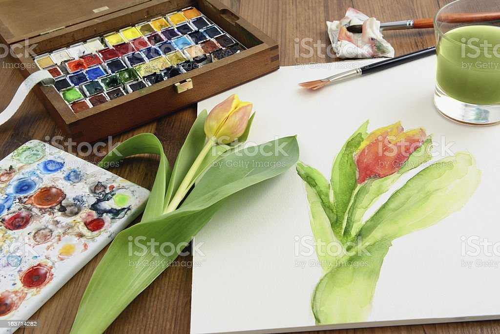 painting a tulip with aquarell paintings royalty-free stock photo