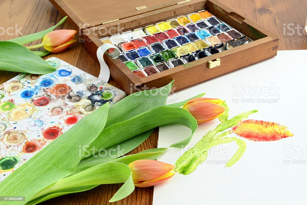 painting a tulip with aquarell paintings stock photo