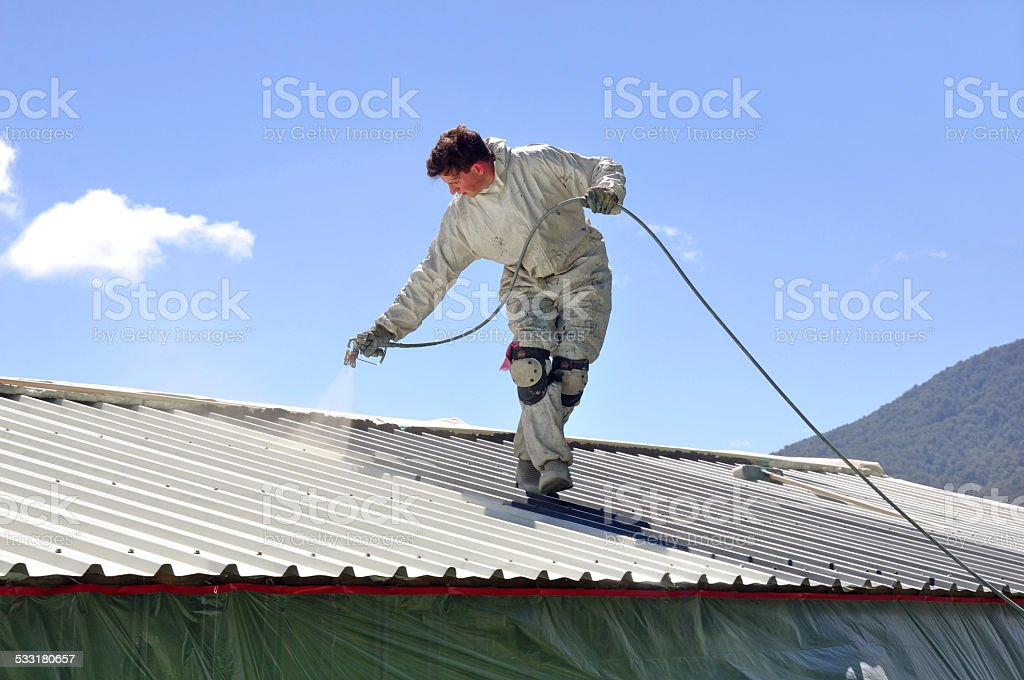 painting the roof stock photo