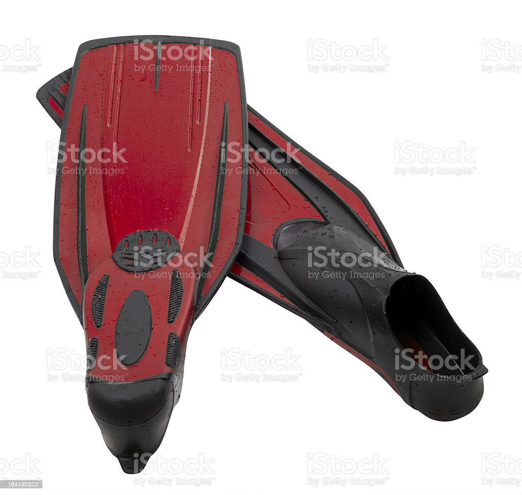 Pair flippers for diving with water drops royalty-free stock photo