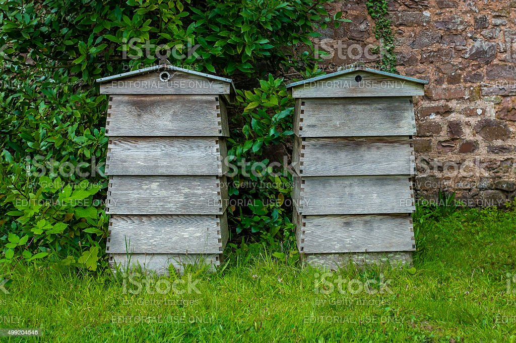 Pair of beehives side by side stock photo