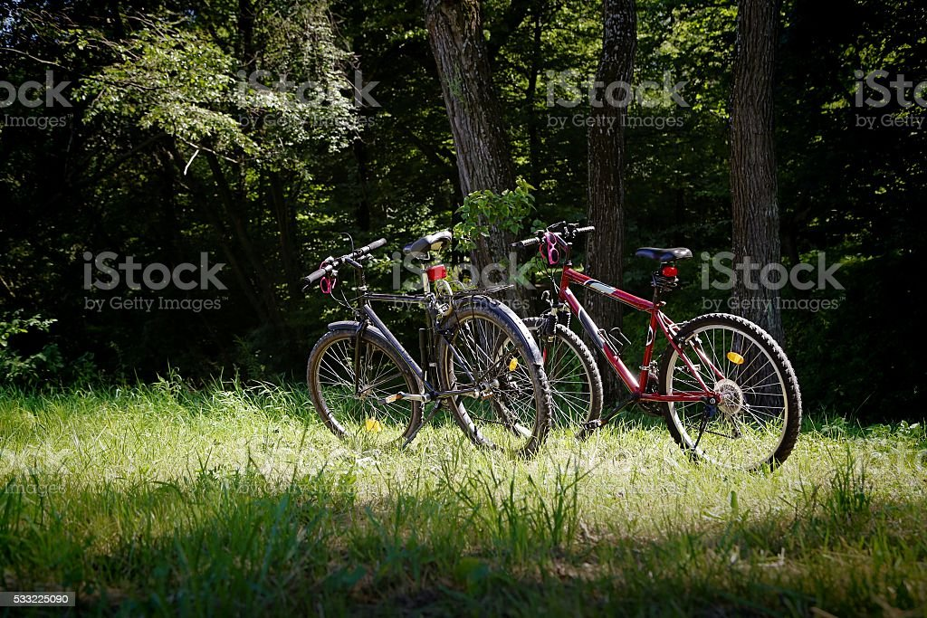 Pair of bikes on the grass stock photo