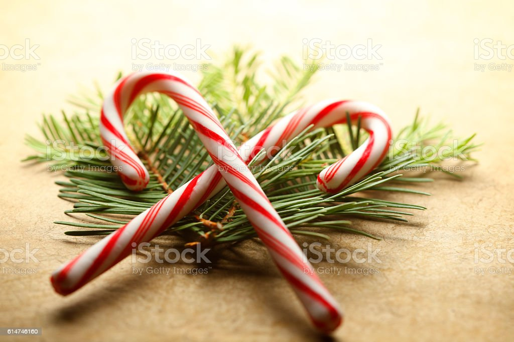 Pair Of Candy Canes Resting On Small Pine Boughs stock photo