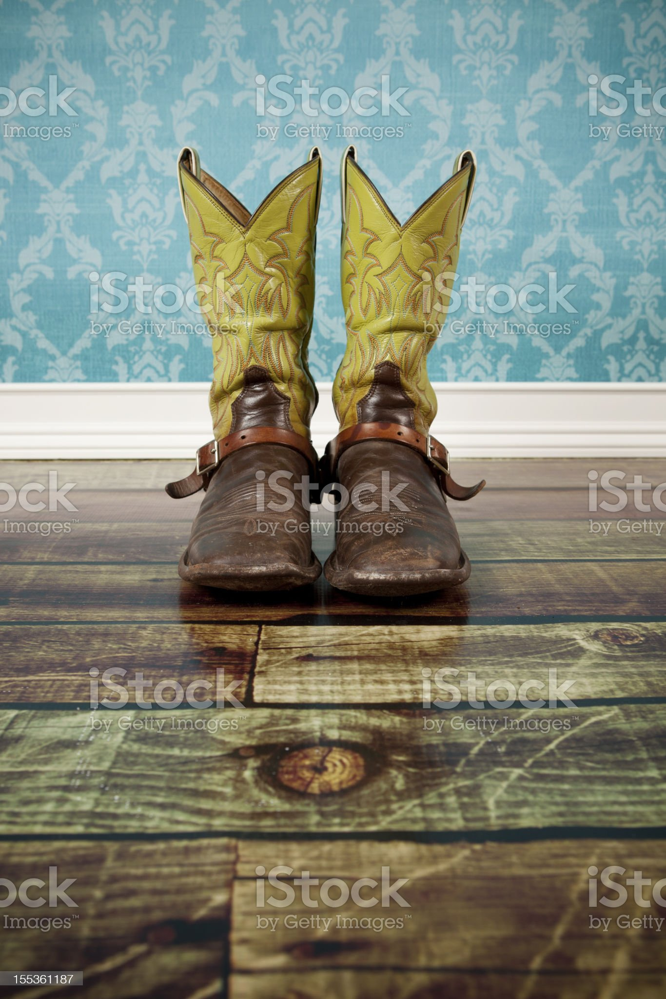 Pair of cowboy boots royalty-free stock photo