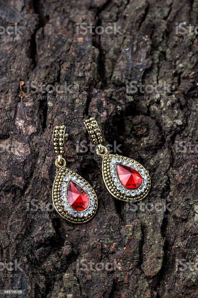 Pair of Earrings stock photo